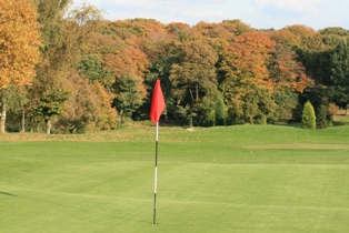 8th Green Warley