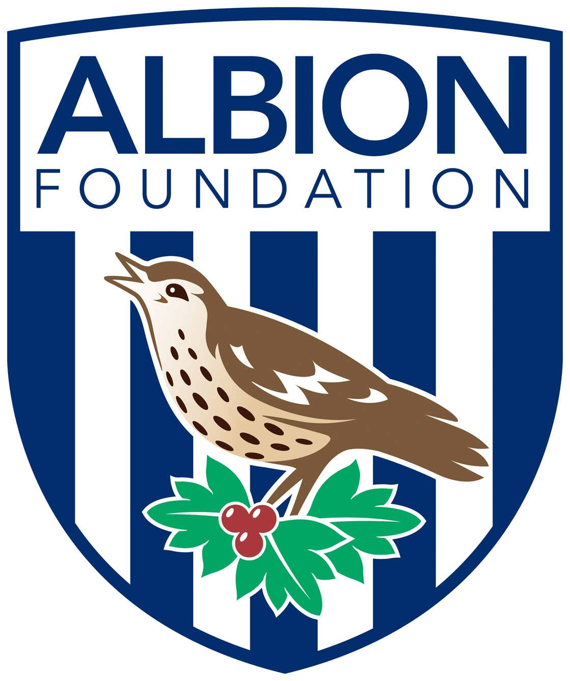 Albion Foundation logo